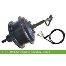 E-bike cassette freewheel motor GBK-100CST 36V250W with high speed and strong torque