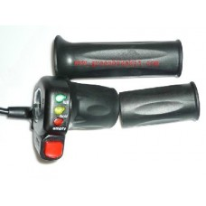 Half twist throttle with LED battery capacity level display